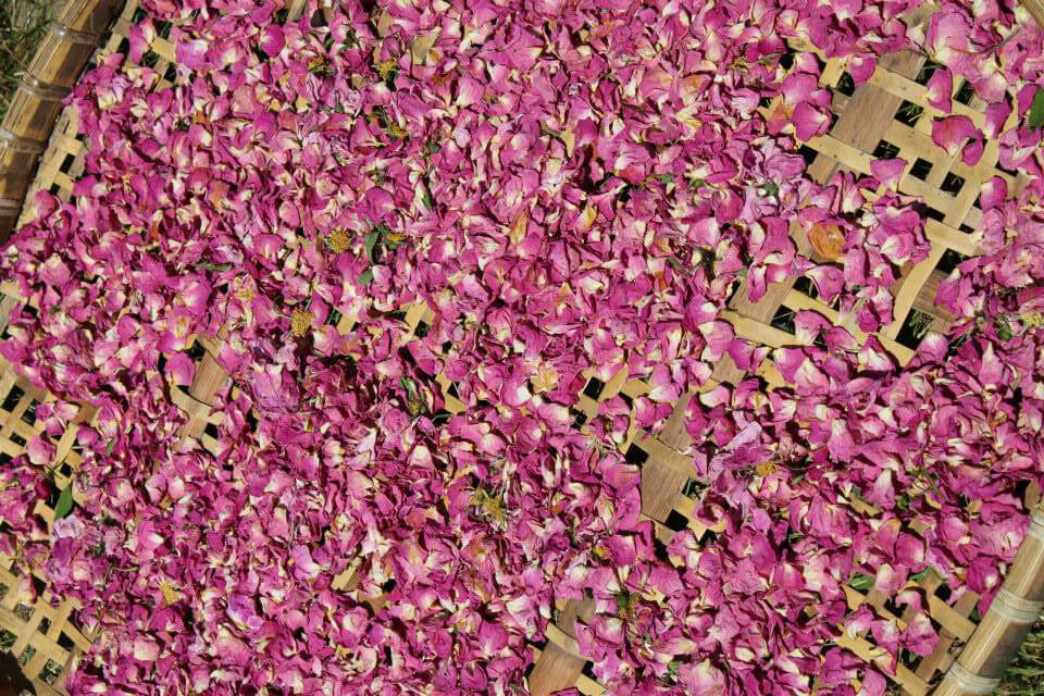 Soul Flower Herbals